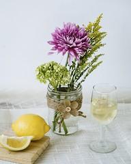 Hortus (davelawrence8) Tags: 6d 2016 home naturemorte project seasons stilllife vsco horton mi usa spring lemon flower wine quiet still