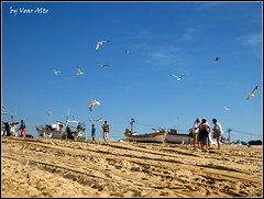 Fresh fish (voar alto one) Tags: sky people beach birds boats seaside sand outdoor posts