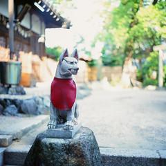 21780005 (redefined0307) Tags: film japan mediumformat shrine slidefilm    bronicas2  zenzabronica provia400x  zenzabronicas2