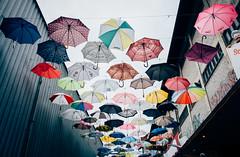 Umbrellas (freyavev) Tags: street urban umbrella schweiz switzerland colorful outdoor zurich perspective rainy zürich umbrellas regenschirm vsco