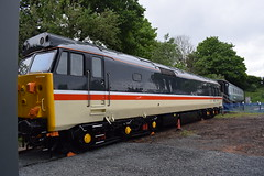 Class 50 Intercity Livery (Midland Red FanBoy) Tags: travel england train trains transportation severnvalleyrailway kidderminster passengertrains severnvalleyrailwayspringdieselgala