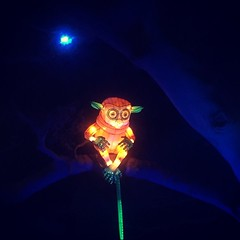 Lemur resting in the night, at Taronga Zoo (light sculpture during Vivid Festival) (MLHS) Tags: light art night zoo sydney vivid lemur tarongazoo 2016 vividfestival