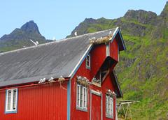 Abitazione norvegese (davidemandini) Tags: canon eos casa nido viaggio norvegia 1200d