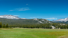 Yosemite 2016 (hermitsmoores) Tags: vacation nature woods nikon hiking lakes roadtrip yosemite fullframe fx forests d800 tuolumnemeadows tiogapass onewithnature nikkor2870mmf28 nikond800