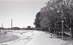 On the Boardwalk Towards Woodbine (Bill Smith1) Tags: toronto beaches ilforddelta100 hc110b asahipentaxspotmaticii filmshooterscollective june2016 supermulticoatedtakumar50f14lens billsmithsphotography