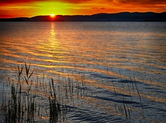 Gold Lake (enzo rettori) Tags: tramonto sunset water lake landscape umbria trasimeno laketrasimeno