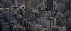 Tokyo 3988 (tokyoform) Tags: city chris cidade urban japan skyline architecture canon buildings japanese tokyo asia cityscape skyscrapers ciudad paisaje paisagem canyon tquio stadt  urbana metropolis  urbano japo sprawl paysage minatoku japon giappone ville kota paesaggio citt tokio urbain 6d stadtbild megalopolis jepang japn   megacity   jongkind tkyto     chrisjongkind  tokyoform