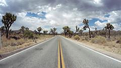 Road to Keys View (arthurcauty) Tags: california road travel usa tree nature america landscape arthur highway joshuatree joshuatreenationalpark keysview cauty