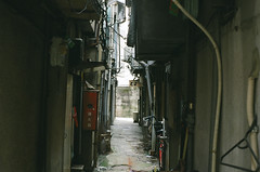 Jigokudani (Hell Valley) (miho's dad) Tags: kodaksupergold400 contaxrx carlzeisstessart2845