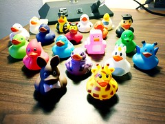 Duck haul on day one. (peachy92) Tags: ducks duck rubberducks rubberduck duckie ducky rubberducky rubberduckies rubberduckie brookhavengeorgia dekalbcountygeorgia dekalbcounty dekalb brookhavenga brookhaven 2016 hiltongardeninnatlantaperimetercenter hiltongardeninn ga georgia us usa unitedstates unitedstatesofamerica dekalbcountyga iphone iphone6 iphoneography iphonegraphy