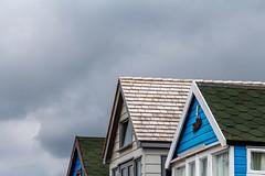 Roof light (TD2112) Tags: roof light sky beachhuts slates