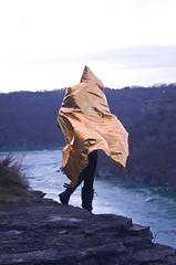 (Aka Cam) Tags: gold cape creep