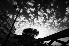 Solo Nuvole Dicevano (Vincenzo Lavino Fotografia) Tags: sky bw cloud love clouds spring nuvole wide note cielo napoli naples 16mm ultrawide biancoenero mkii vicoequense nighth canon5dmkii canon5dmk2 canon1635f4
