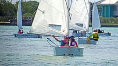 Sarasota Squadron Summer Sailing Camp (soniaadammurray - SLOWLY TRYING TO CATCH UP) Tags: trees sea camp sky children fun education sailing boating land sailboats learn digitalphotography