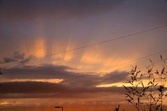 Proclaim the Night (tonydickins) Tags: weather sky sunset clouds cloud outdoor serene flare twylight evening