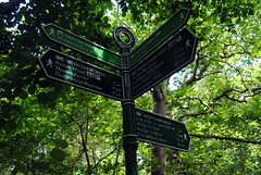 Eltham Park North sign (zawtowers) Tags: park green london sunshine sign walking 1 warm walk space exploring capital north july saturday ring 2nd direction showers stroll section parkland amble eltham 2016 woolwichfoottunneltofalconwood