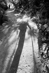 Long Strider (the underlord) Tags: shadow inca trekking trek walking long hike poles incatrail lowsun x100 wideconversionlens walkingpoles silverefexpro2 fujix100 wclx100