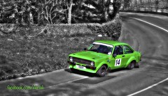 Green 14 (Ningaloo.) Tags: color colour green ford climb 14 hill gary guernsey escort motorsport selective duquemin 4828