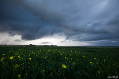 Ambiance (NeoNature) Tags: cloud mer france nature weather canon landscape scenery structure shelf normandie convection paysage normandy calvados meteorology colza neonature mtorologie arcus