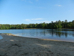 Lake Nummy Beach (Christine_Ray) Tags: new pine forest state reserve national jersey pinelands barrens belleplain belleplaincapemayandparvin