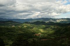 Like Miro's landscape