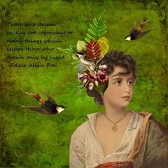 BE CREATIVE (Nonni_F) Tags: birds creative dream fantasy enchanted itkupilli
