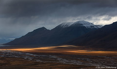 Morning at Spitsbergen (Pewald) Tags: bestcapturesaoi elitegalleryaoi