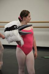 IMG_0448 (nda_photographer) Tags: boy ballet girl dance concert babies contemporary character jazz newcastledanceacademy