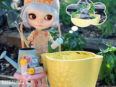 Rei's Gardening Experiment