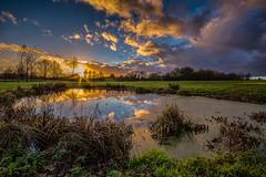 Last light (James Waghorn) Tags: winter light sunset england sky sun tree water clouds reflections thailand countryside kent nikon sigma ultrawide maidstone lightroom sigma1020 d7100 blinkagain bearstedgolfcourse