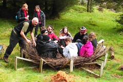 Building a white-tailed eagle nest, Ross of Mull - John Clare