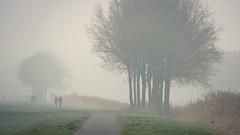 A walk in the mist (andzwe) Tags: mist netherlands dutch fog path pad nederland panasonic fz drente drenthe dutchlandscape fz50 beekdal reestdal reest kuieren panasonicdmcfz50 panasoniclumixdmcfz50 throughthemist walkinginthemist reestoever vaartweg wandelaarsindemist walkersinthemist doordemist