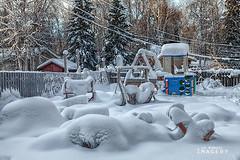 0121 IMG_9372 (JRmanNn) Tags: alaska ak fairbanks