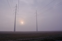 In a misty morning () Tags: morning winter mist misty fog sunrise landscape photography photo foto photographer photos alba country campagna fotografia pylons nebbia inverno paesaggio stefano fotografo mattina tralicci trucco zush d7100 nebbiosa stefanotrucco