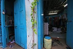 Colourful Kolkata (tanayesh) Tags: blue india color colors kolkata calcutta westbengal sigma1020mm bluecolor canon400d canon60d canon1855mmlense colorfulkolkata colourfulkolkata