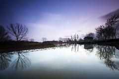 Padule di Fucecchio (Orione59) Tags: photography le 5dmk3 orionephotographer