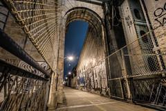 The Manhattan Bridge (dansshots) Tags: nyc newyorkcity newyork graffiti chinatown manhattanbridge hdr d3 newyorkatnight chinatownnyc hdrphotography hdrphoto newyorkphotography nikond3 manhattanbridgeatnight dansshots