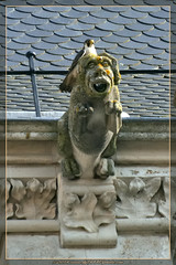 Posé / Laid (lgDAMSphoto) Tags: france cathedral flight wing gargoyle cathédrale raptor falcon vol predator lorraine gargouille peregrine aile moselle plumage toul faucon rapace prédateur pèlerin nikkor70300 meurthe nikkond7000 toullois
