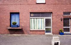 Mein Kiez: Ansicht #1 (Thomas Remme) Tags: rot 35mm iso400 fenster blau revue400se tren negativfilm klinkermauer engter meinkiez thomasremme|photographie