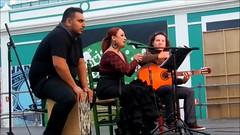 VII Feria de Abril Las Palmas Gala de Clausura video 03 (Rafael Gomez - http://micamara.es) Tags: las laura de video abril feria pepe gala vii palmas clausura corts rascn dorestes