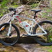 "Velectrix-Ascent-Electric-Mountain-Bike-087 • <a style=""font-size:0.8em;"" href=""http://www.flickr.com/photos/97921711@N04/15859488394/"" target=""_blank"">View on Flickr</a>"