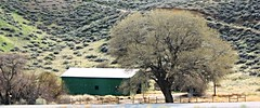 Road trip -  So Cal - Road side barn (Pix.by.PegiSue>Thx over 4M+ views! Click on Albums) Tags: california travel trees plants mountain lake tree green art history nature public colors museum clouds garden landscape botanical photography countryside artwork scenery sandiego couleurs natureza paintings statues roadtrip tourist arbor views animaux horticulture sculptures touristattraction visitorscenter touristinformationcenter visitorinformationcenter artcollections huntingtonlibraryandbotanicalgardens visitsandiego pixbypegisue wwwflickrcomphotospixbypegisue visitorsite