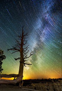 Star Trails at Bryce