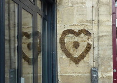 JOYEUSE SAINT VALENTIN ! (FloDL) Tags: paris reflection wall moss heart coeur reflet mur mousse saintvalentin valentineday ruefranaise