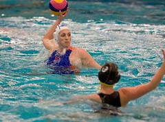 P1270912 (roel.ubels) Tags: world sport swimming deutschland nederland league oranje duitsland waterpolo drachten zwemmen 2015 topsport