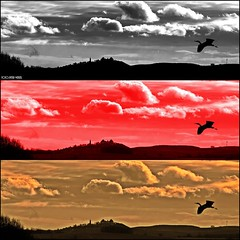 ..in den Farben unseres Landes (peterphot) Tags: photoshop sachsen collagen augustusburg photoscape