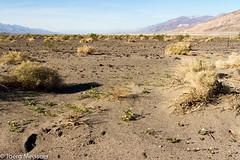 Westside Road (Joerg Meissner) Tags: california westsideroad deathvalleynationalpark