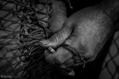 marinero (Mauro Esains) Tags: red patagonia blanco puerto trabajo y negro manos trabajador marinero