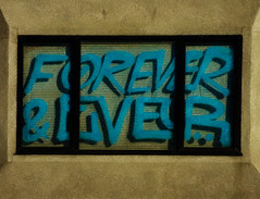Forever & Ever (Steve Taylor (Photography)) Tags: city blue shadow newzealand christchurch brown streetart black art texture window glass digital graffiti blind canterbury nz southisland cbd forever ever