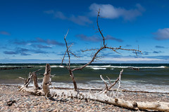 Michigan_North-0726.jpg (CitizenOfSeoul) Tags: usa beach sand michigan may greatlakes shore northamerica upperpeninsula lakesuperior whitefishpoint 2016